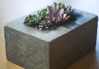 cement_pots (19 of 23)