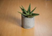 cement_pots (2 of 23)